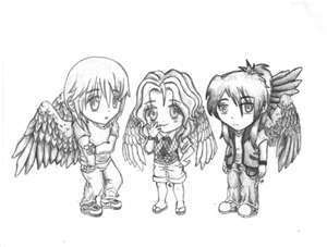 fang and others - maximum-ride Photo