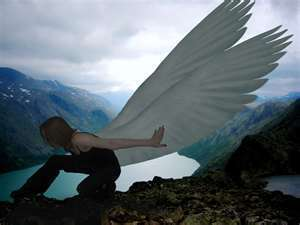 Maximum Ride wallpaper called fang and others