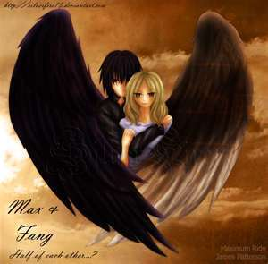 Maximum Ride 바탕화면 probably containing a portrait called fang and others