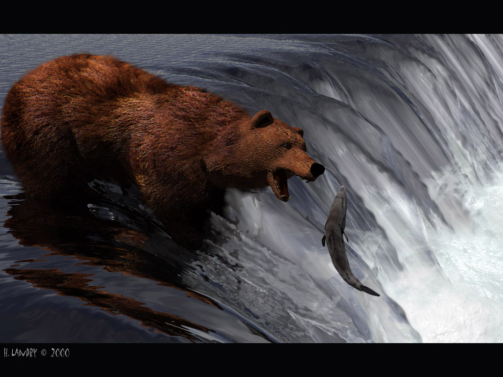 bears! images 3d bear hd wallpaper and background photos (21618031)