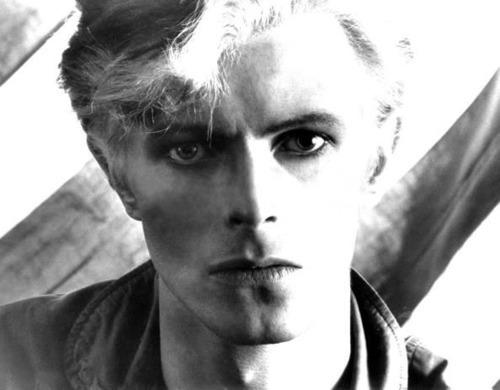 David Bowie David Bowie Wallpaper 68231 Fanpop