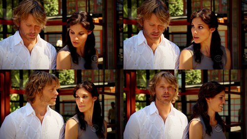 NCIS: Los Angeles hình nền probably containing a revolving door called Deeks and Kensi