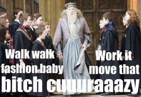 Dumbledore Gaga