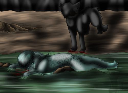 Hollyleaf kills Ashfur
