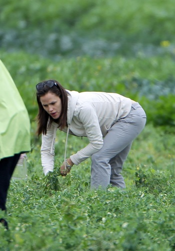 Jen @ the Community Farm in Thousands Oaks with بنفشی, وایلیٹ and Seraphina 4/21/11