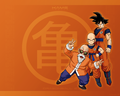 Kame - dragon-ball-z wallpaper