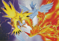 Legendary birds trio - legendary-pokemon photo