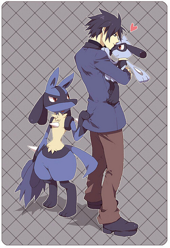 Pokemon Steven And Riley Pokemon: Riley images ...