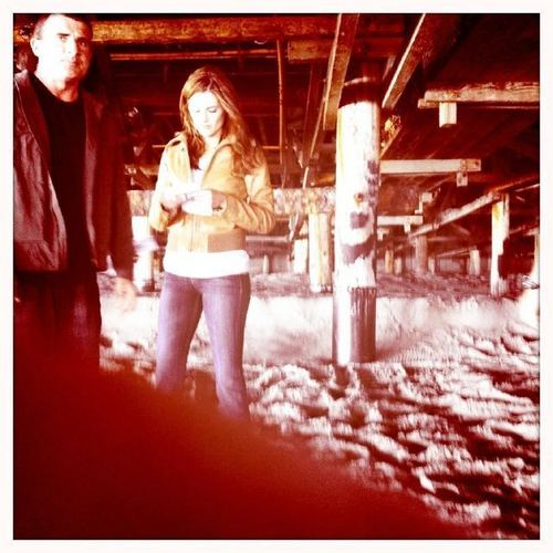 Stana and Dominic Purcell BTS