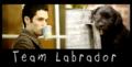 Team Labrador - dan-and-blair photo