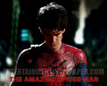 upcoming-movies - The Amazing Spider-Man (2012) wallpaper