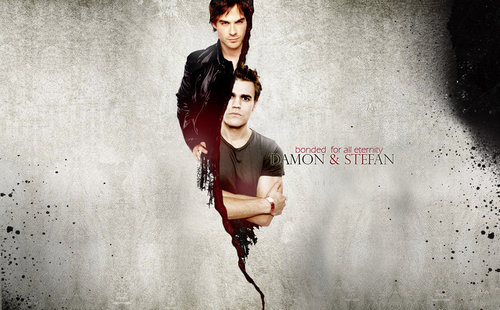 brothers - damon-and-stefan-salvatore Photo