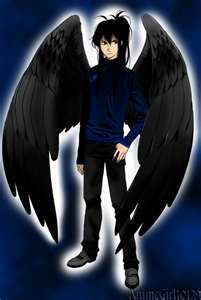 Maximum Ride wallpaper possibly with a tabardo, tabard and a surcoat, sobretudo called fang and the flock