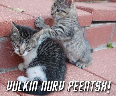 funny pics :D