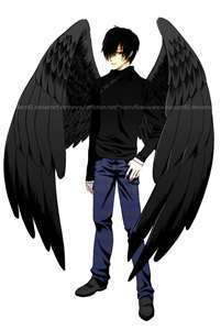 Maximum Ride 바탕화면 called pics