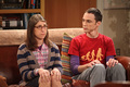 sheldon y amy - amy-farrah-fowler photo
