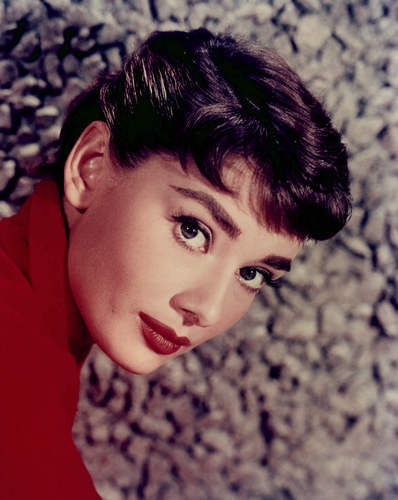 Audrey Hepburn wallpaper containing a portrait titled Audrey Hepburn
