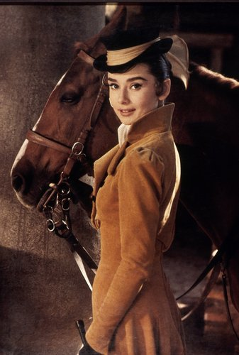 Audrey Hepburn wallpaper containing a horse wrangler, a horse trail, and a lippizan entitled Audrey Hepburn
