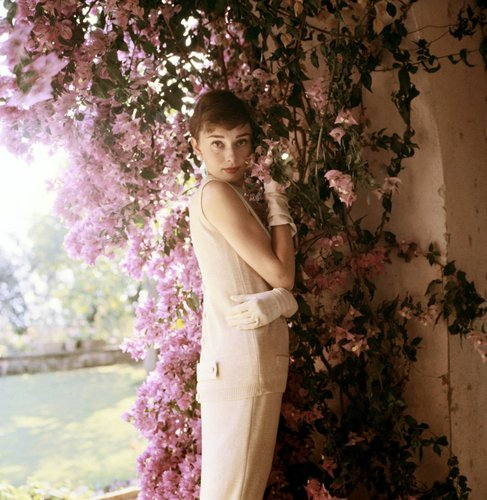 Audrey Hepburn wallpaper possibly containing a well dressed person titled Audrey Hepburn
