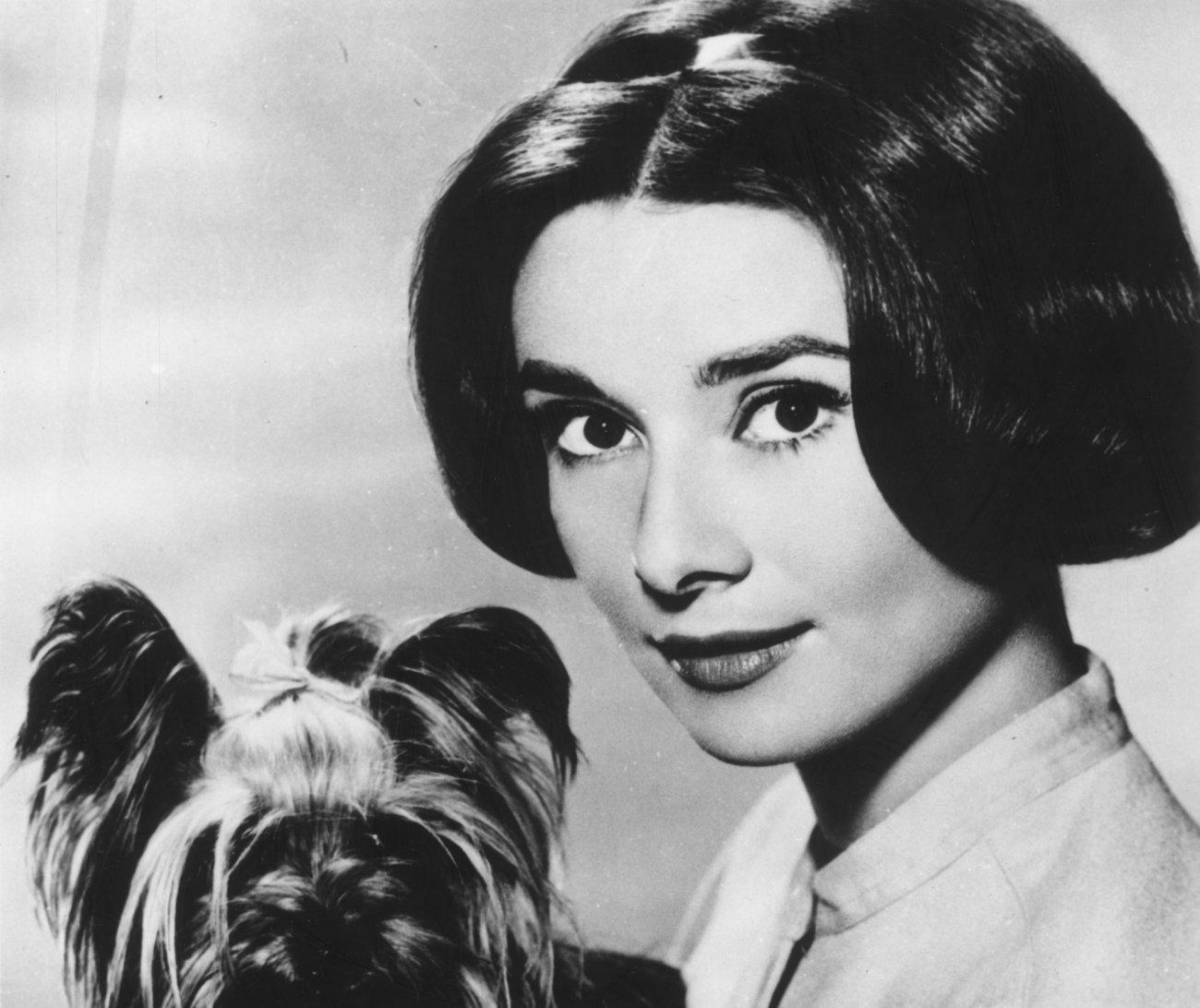 Audrey Hepburn - Photo Set