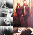 Caroline/Tyler (4wood) Say U 爱情 Me, U R Lovely, Do U Feel It Too? (Wolfvamp) 100% Real :) ♥