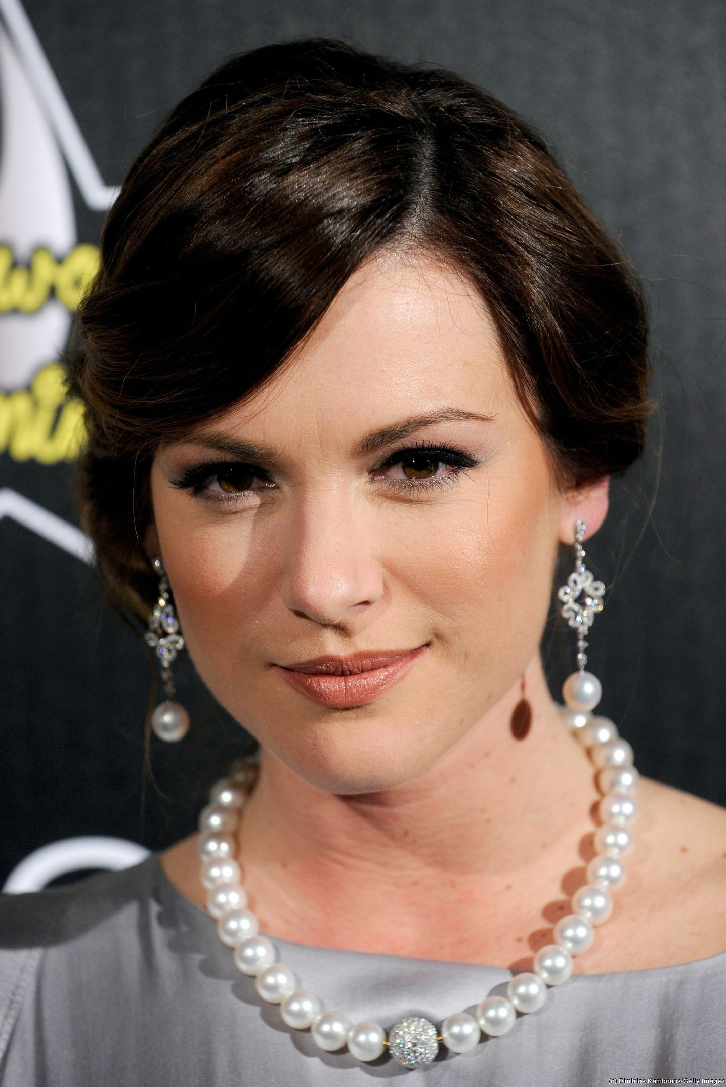 Danneel_Harris_in_silver