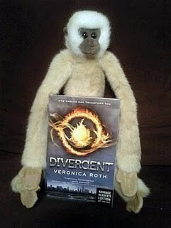 Everyone Loves Divergent