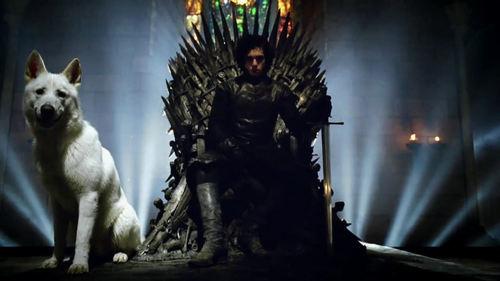 Iron trono