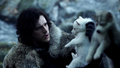Jon & Ghost - game-of-thrones photo