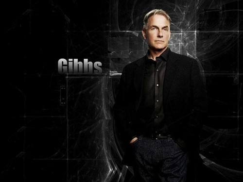 TV Male Characters wallpaper with a well dressed person and a business suit called Leroy Jethro Gibbs [NCIS]