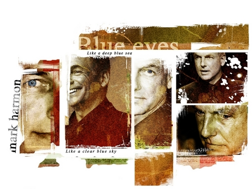 TV Male Characters wallpaper probably with a newspaper and animê titled Leroy Jethro Gibbs [NCIS]