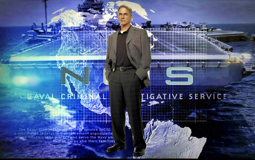 TV Male Characters wallpaper with a business suit titled Leroy Jethro Gibbs