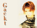 More Gacktness - gackt photo