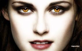 Ms.Vampire