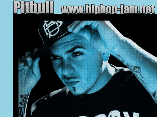 Pitbull aka Mr. 305