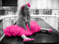Pretty in Pink - photography photo