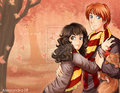Ron + Hermione - Autumn