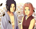 Sasusaku 4ever - sasuke-and-sakura photo