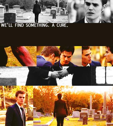 Stefan&Damon.