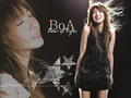 boA - kpop-girl-power wallpaper