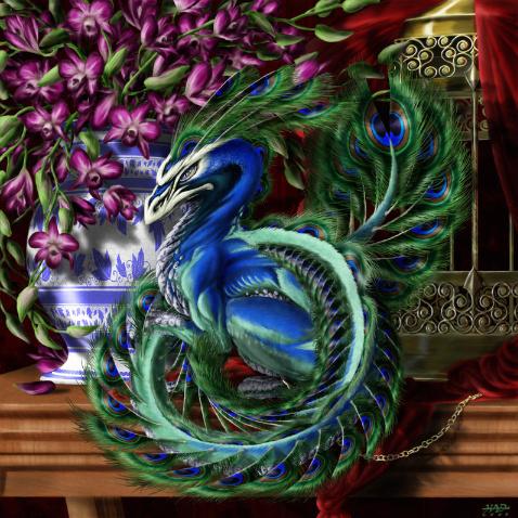 Dragons wallpaper called peacock dragon