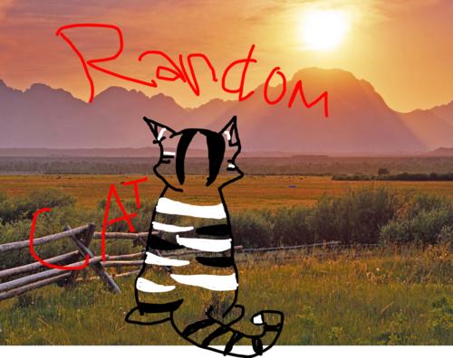 walang tiyak na layunin cat