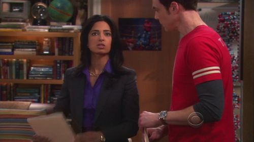 4x21 The Agreement Dissection Big Bang Theory Image 21898545