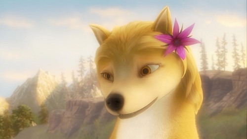 A & O Hot Bloom + Hot 云, 云计算