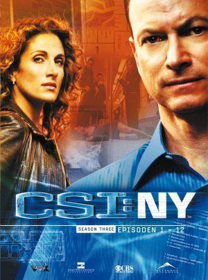 CSI - NY poster (Smacked)