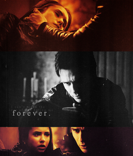 Delena & Steferine wallpaper possibly containing a fire and a concert entitled Damon & Elena <3