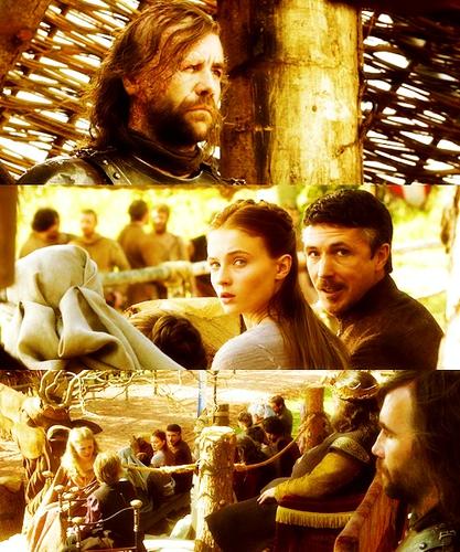 Sandor, Sansa & Petyr
