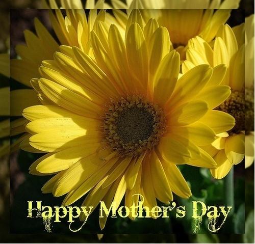 Happy Mother's hari Berni