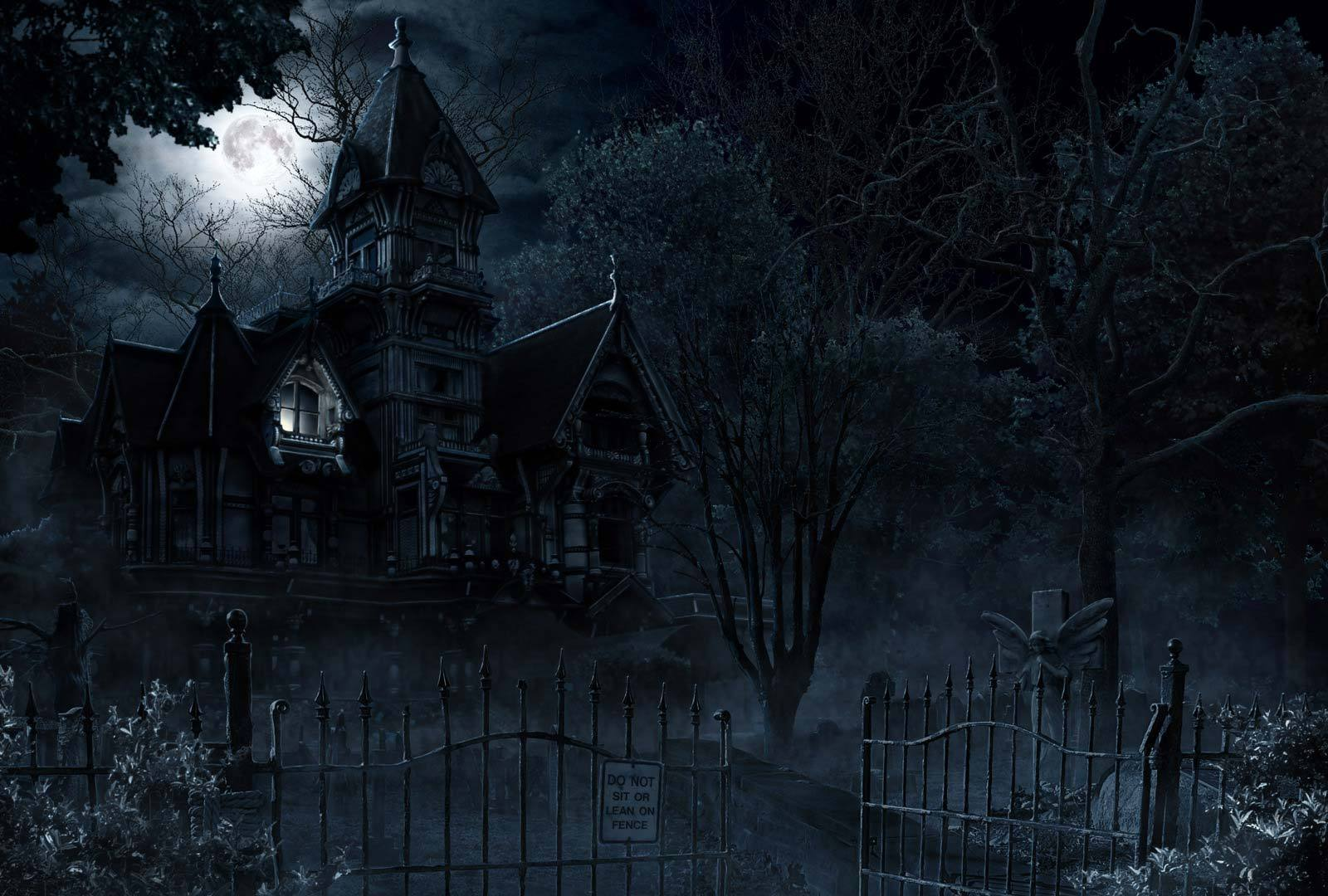 Haunted castle after dark photo 21838089 fanpop for Creepy gothic pictures