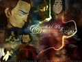 I'll fly - avatar-the-last-airbender wallpaper